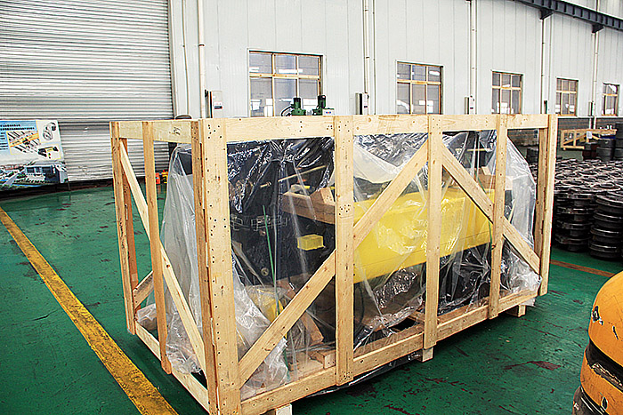 European type electric hoist delivered to Tunisia